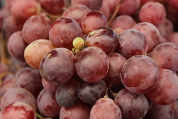 Grapes on display at the market