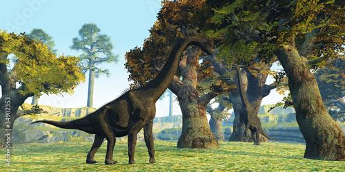 Fototapeten,dinosaurier,gigantisch,fleischfliege,pflanzenforschung