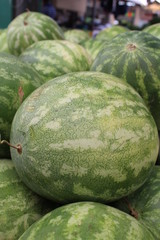 Watermelons on display at the market