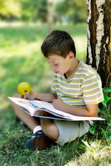 A boy with apple reads book at the tree