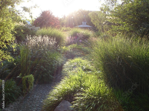 Sunset Creates Peaceful Garden Scene