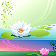 Lotus Flower In a Pond - Vector Background