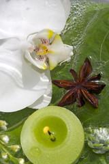 Kerze & Orchidee schwimmend