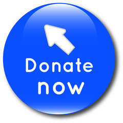 Donate now web button