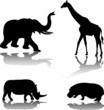 wild animals - vector