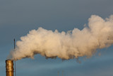 Dyrty smoke - 34943943