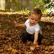 Enfant qui joue avec des feuilles