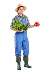 Full length portrait of a male farmer holding vegetables
