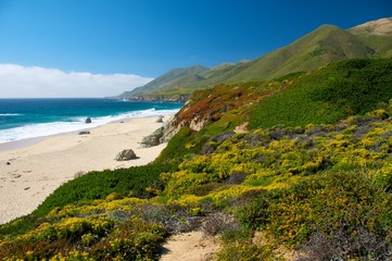 Paesaggio al Big Sur Pacific Coast Highway California