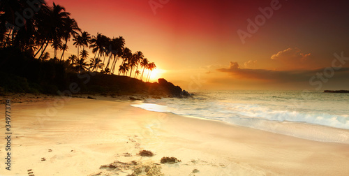 Fototapeten,sonnenuntergänge,palme,tropisch,karg