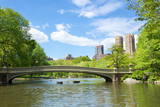Bow Bridge at Central Park, New York - Fine Art prints
