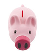 Top view of pink piggy bank with clipping path