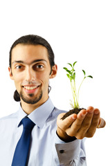 Young student holding green seedlings on white
