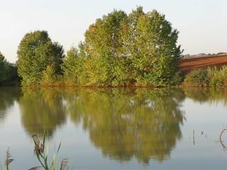 Laghetto - Pond