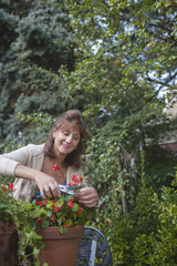 Caucasian woman clipping flowers in garden
