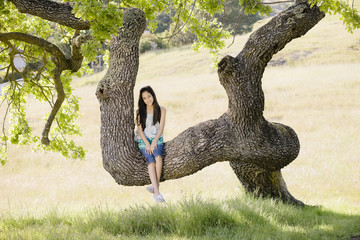 Hispanic girl sitting in tree