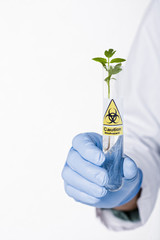 Hispanic scientist holding test tube with caution symbol containing sprout