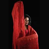 Hispanic flamenco dancer