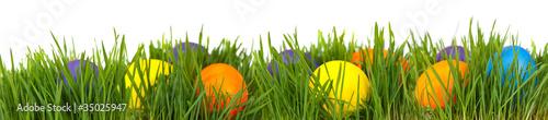 Easter border - 35025947