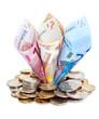 Billets d'euro poussant au milieu de pièces
