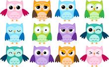 Zestaw 12 kreskówek sowy z różnych emocji