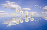 five  dandelion clocks on mirror and sky poster