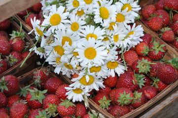 Strawberries and Daisies