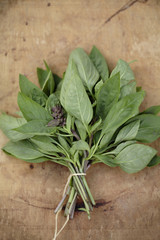 Bouquet of Thai basil