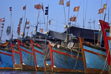 Vietnamese boats moored in harbor