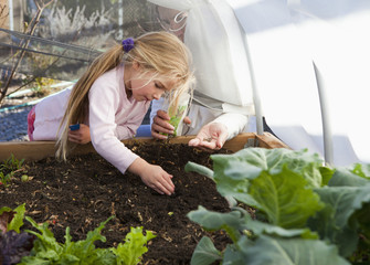 Caucasian girl planting seeds in garden