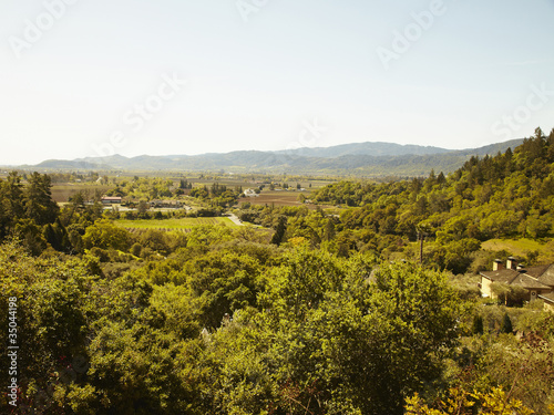"""Expansive view of wine country in Napa Valley, California"""