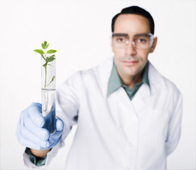 Hispanic scientist holding test tube containing sprout
