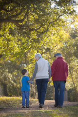 Grandparents walking with grandson in park