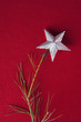 Silver star on top of Christmas tree