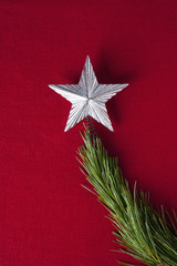 Silver star on branch of Christmas tree