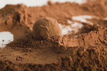 Chocolate ball in cocoa powder