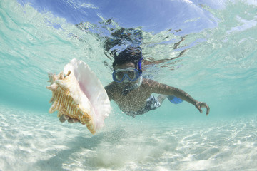 Hispanic man snorkeling and finding shell