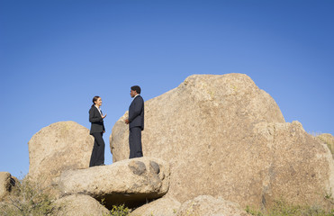 Business people standing on rock talking