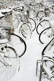 Parked bicycles in snow
