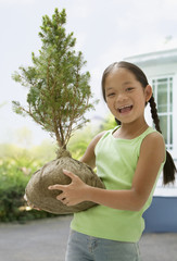 Asian girl holding sapling tree