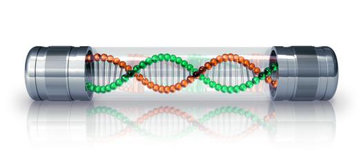 DNA molecule in hermetic capsule