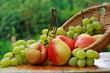 Obstkorb mit Birnen und Trauben