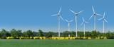 Fototapety Windkrafträder in einem Rapsfeld hinter einer Allee