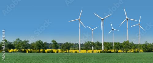 Leinwanddruck Bild Windkrafträder in einem Rapsfeld hinter einer Allee