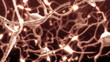 Active nerve cell