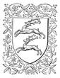 Common deer, retro design, vintage engraving