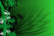 Abstrac background with green bamboo illustration