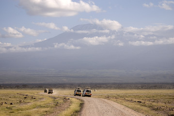 Game drive at Amboseli NP, Kenya