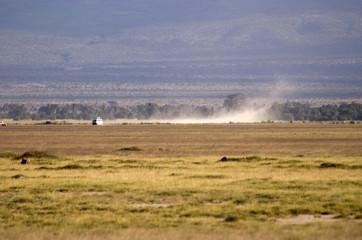 Game drive at Amboseli NP, Kenya