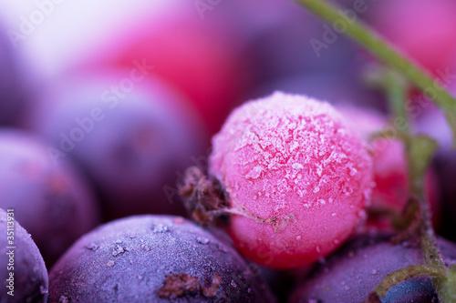 Fototapeta mrożone - jedzenie - Owoc